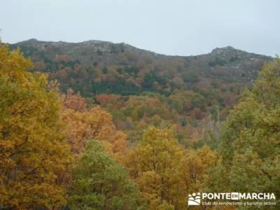 El Castañar de El Tiemblo, excursiones alrededores de madrid; yelmo pedriza